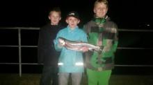 Den flotte fiske trio