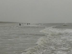 Det ser godt ud når klubben fylder kysten.