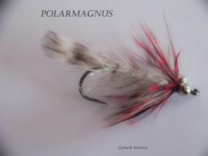 Polar Magnus